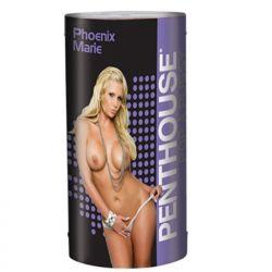 Vagin Masturbator Penthouse Phoenix Marie